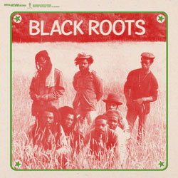Black Roots Anthology
